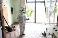 18_tiger.jpg